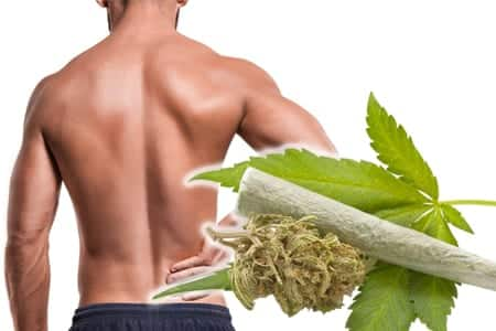 medical cannabis for pain relief